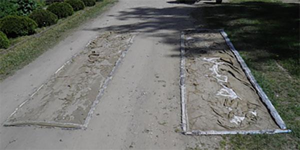 Stan mat dezynfekcyjnych w jednej z gmin, w której stwierdzono ogniska ASF, fot. materiały kontrolne NIK
