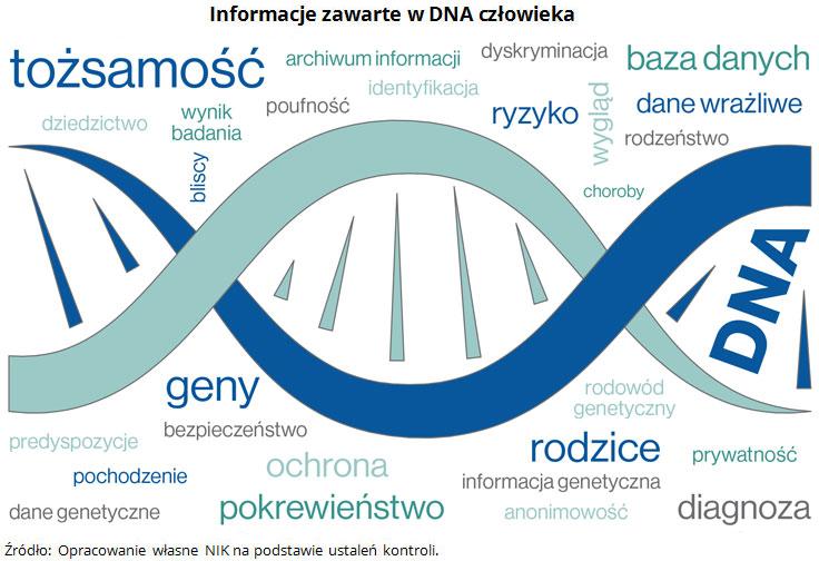 Informacje zawarte w DNA człowieka Źródło: Opracowanie własne NIK na podstawie ustaleń kontroli.
