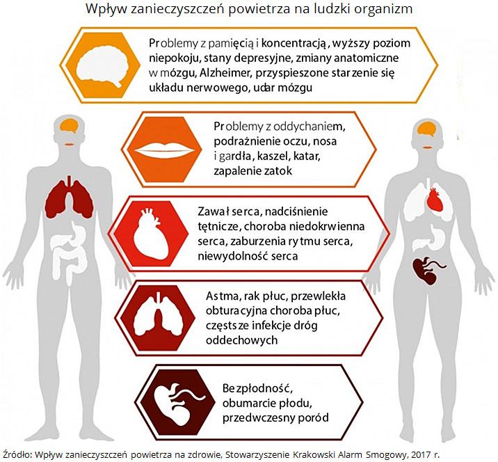 Wpływ zanieczyszczeń powietrza naludzki organizm. Źródło: Wpływ zanieczyszczeń powietrza nazdrowie, Stowarzyszenie Krakowski Alarm Smogowy, 2017 r.