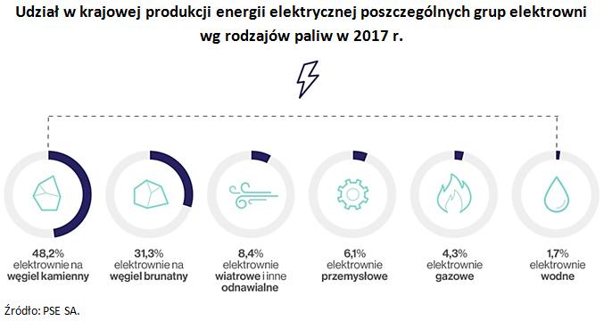 Udział w krajowej produkcji energii elektrycznej poszczególnych grup elektrowni wg rodzajów paliw w 2017 r. Źródło: PSE SA.