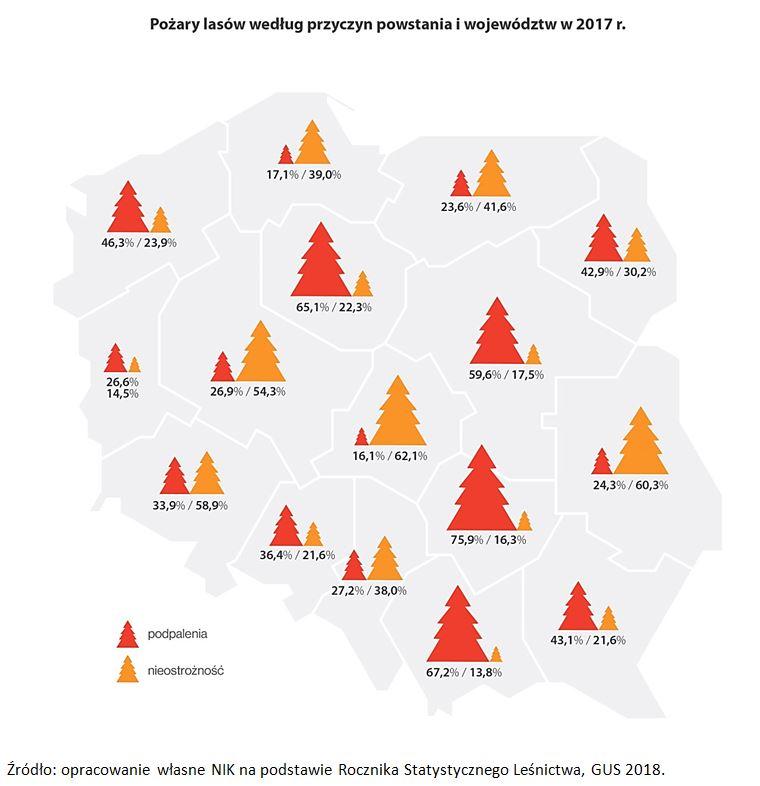 Pożary lasów według przyczyn powstania i województw w 2017 r.
