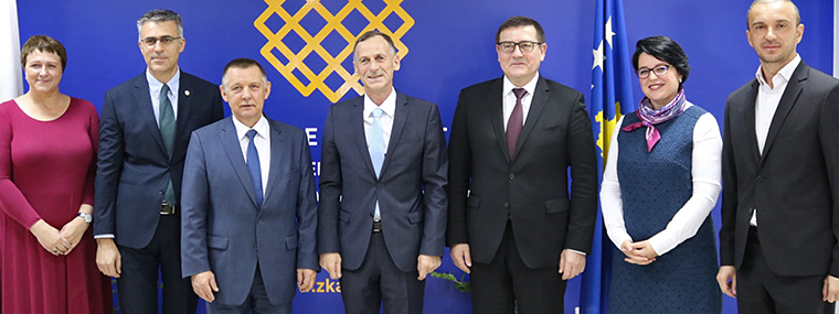 NIK's delegation with Kosovo Colleagues