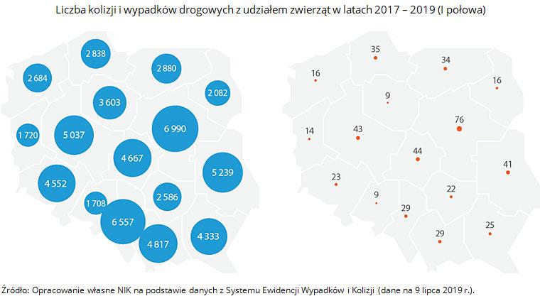 Liczba kolizji i wypadków drogowych z udziałem zwierząt w latach 2017 - 2019 (I połowa). Źródło: Opracowanie własne NIK na podstawie danych z Systemu Ewidencji Wypadków i Kolizji (dane na 9 lipca 2019 r.).
