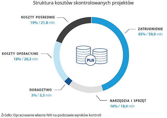 Struktura kosztów skontrolowanych projektów (opis grafiki poniżej)